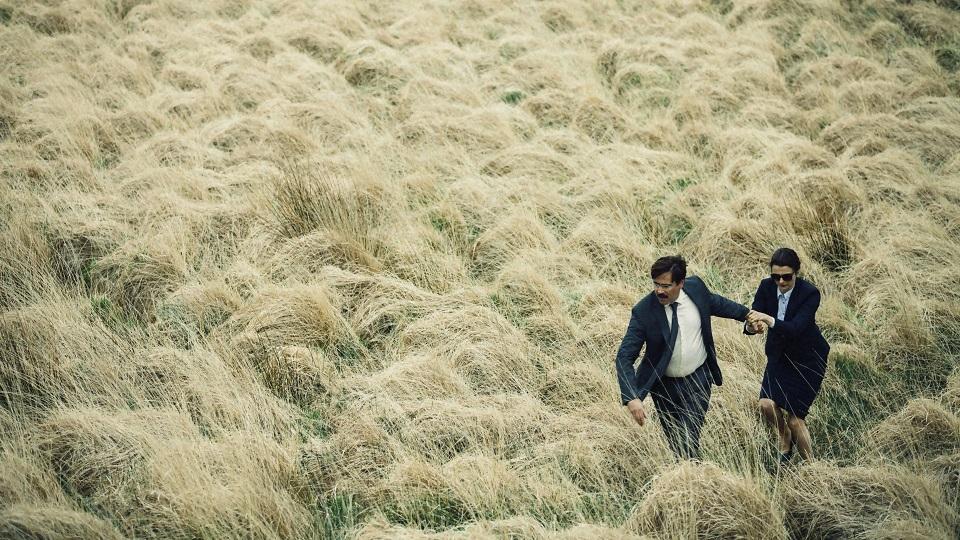 David en vriendin in een korenveld